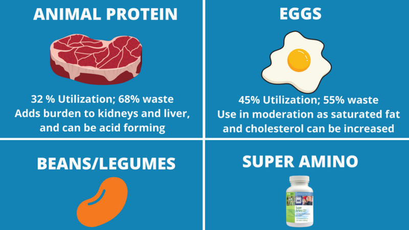 PICKING PROTEIN IS LIKE PICKING A SPOUSE!